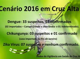 Cruz Alta lan�a o Comit� Municipal de Enfrentamento ao Aedes Aegypti